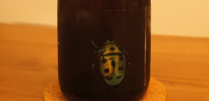 Yardley Brothers BUGS: Bourbon Marmalade Wheat Sour